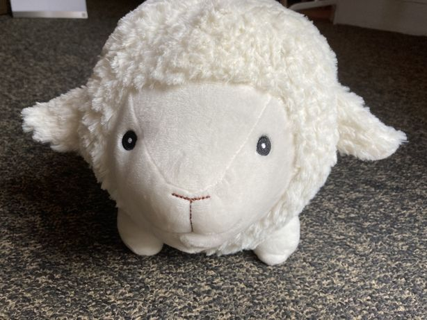 Nowa owca skarbonka