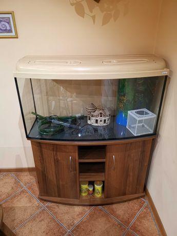 Akwarium 200l panoramiczne z szawką i wyposażeniem