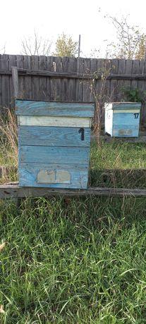 Продаю улья для пчел