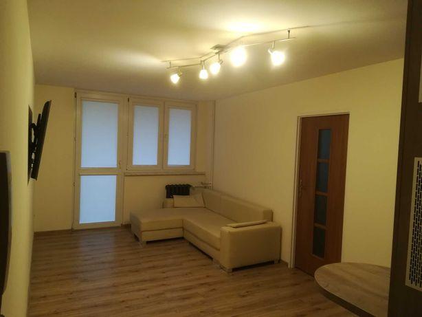 mieszkanie 2 pokoje do wynajecia