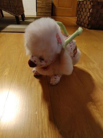 Malinha para menina em forma de cão