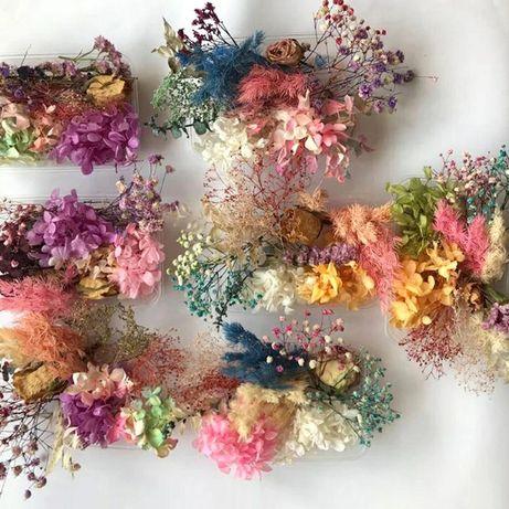 Гербарий, набор сухоцветов для изготовления украшений эпоксидной смолы
