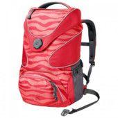 Чудесный ортопедический рюкзак школьницам Jack Wolfskin Ramson Top 20