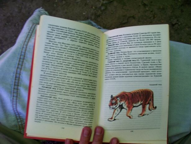 Редкие и исчезающие животные 1987
