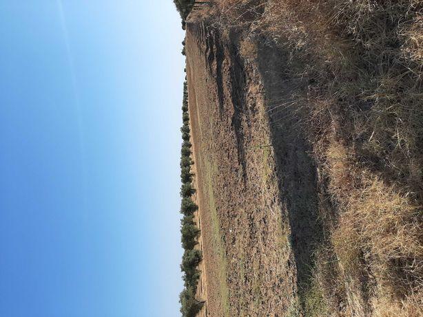 Terreno agrícola 9.500 metros quadrados
