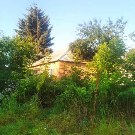 22307229А2Продам   комфортный   дом в Прудянке.