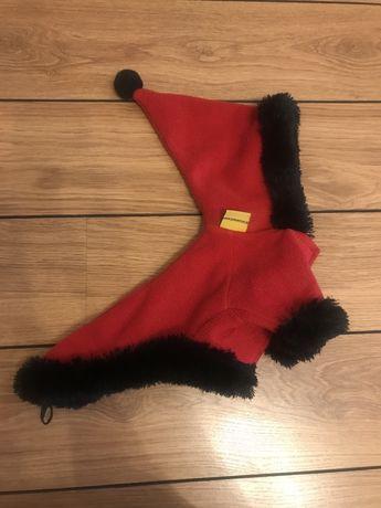 Ubranko zimowe dla psa york