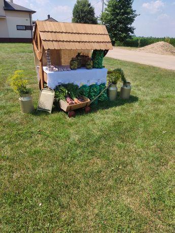 Ogórki śremskie, dowóz, koper gratis. Bio , ekologiczne,  gruntowe