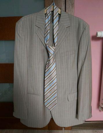 Garnitur + krawat