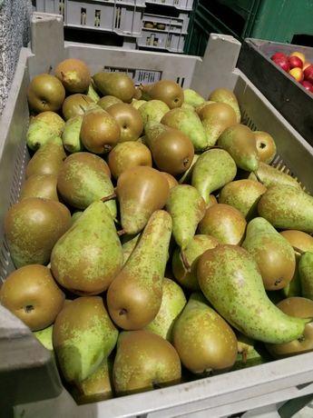 Jabłka gruszki z własnego gospodarstwa