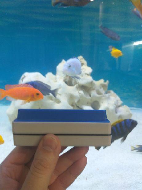 Шкребок магнитный для аквариума.