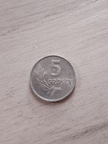 Stara moneta 5 groszy bez znaku mennicy 1962 rok