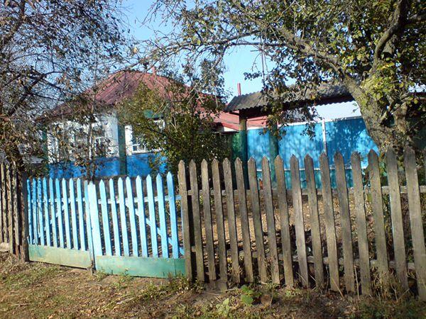 Продам жилой дом в центре поселка Шалыгино с приусадебным участком