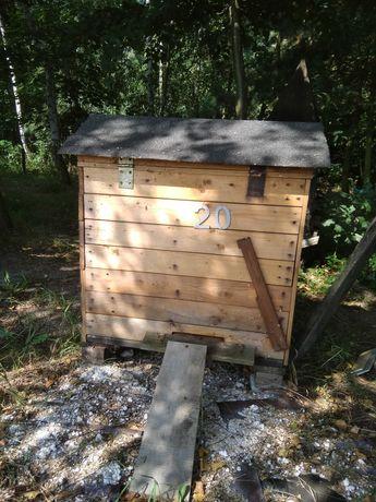 Pszczoły , Odkłady pszczele Ramka WZ