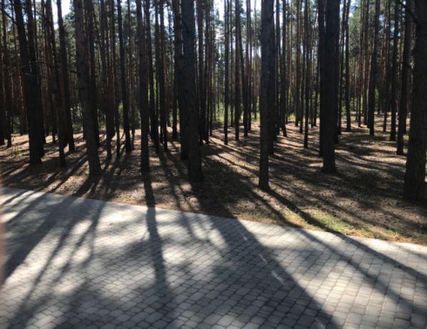 Шикарный участок в Лесной Буче