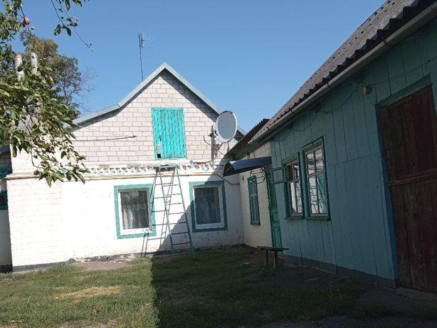 Продам усадьбу в селе Саксаганское ( Жовтневе) Криничанского района