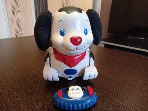 Интерактивная собачка Chicco