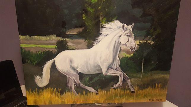 sprzedam obraz koń