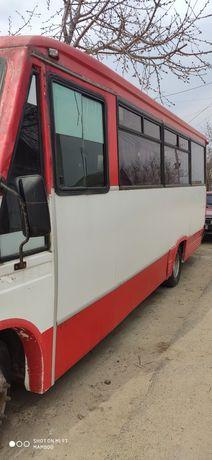автобус Iveco 59.12