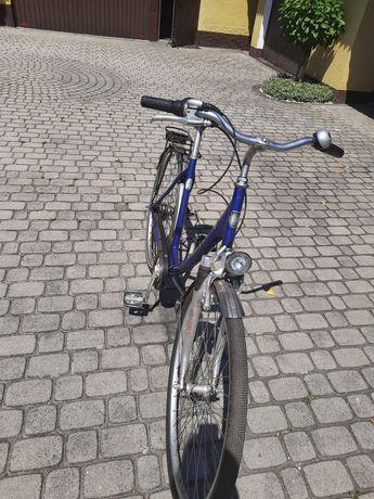 Damka, rower miejski