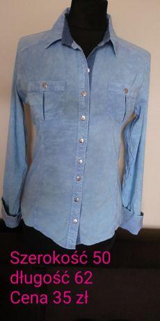 Spodenki koszula t shirt kotek leginsy bluza