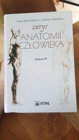 Zarys anatomii człowieka wydanie VIII Adam Krechowiecki Czerwiński
