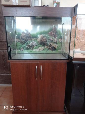 Новый заказ комплект: аквариум+крышка с освещением+тумба .Доставка