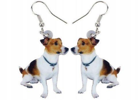 Kolczyki pies terier jack russel