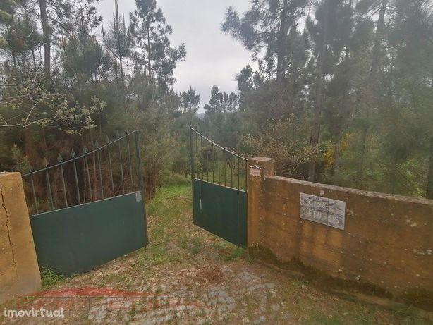 Moradia (2) com 6700 m2 terreno Valadares Baião