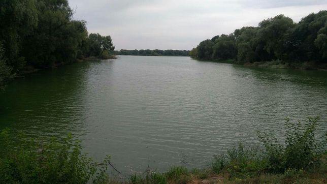 Участок в центре села Рудьковка