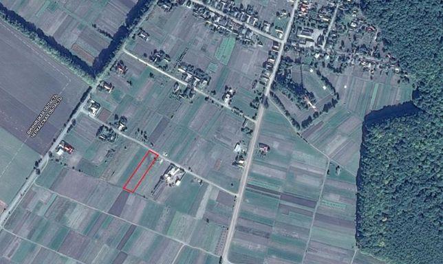 Земельный участок в Черкасской обл., 25 сот