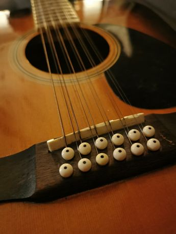 Gitara 12 strunowa