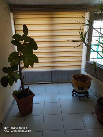MORADIA - T3 / 400m2 - Oportunidade casa com aquecimento duplo