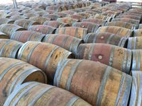 Lote barricas/barris/pipos madeira de Carvalho