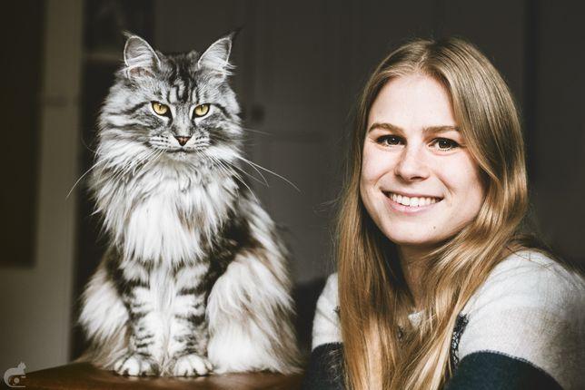 Opieka nad kotem podczas wyjazdu.Catsitter/petsitter w całej Warszawie