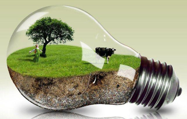 Лампочка (лампа) раритет, 24 вольт / 45 ватт. Торговая марка «NARVA»