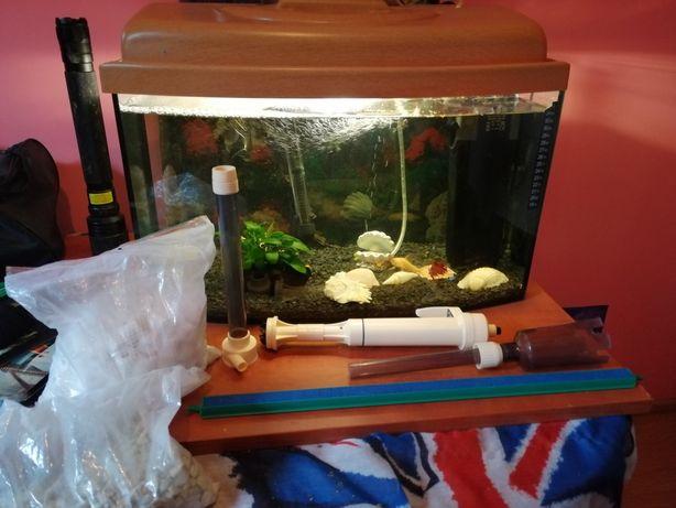 Sprzedam akwarium z akcesoriami i rybkami.