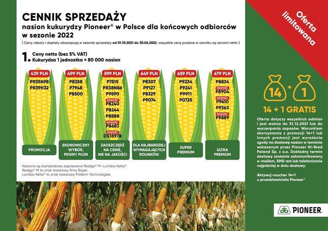 Sprzedaż nasion Kukurydzy 2022/2023 Darmowa dostawa
