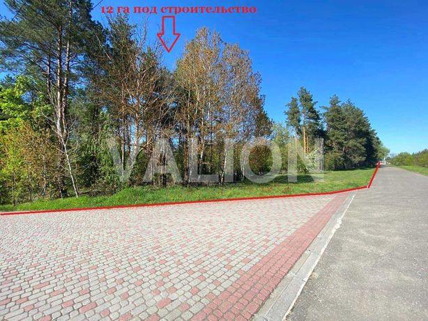 Продам землю 12 ГА под строительство с.Ясногородка, Макаровский р-н.