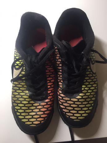 Сороконіжки Nike magistra