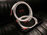 Chord Odyssey X Gemini wtyk kable głośnikowe Trans Audio Hi-Fi Wrocław