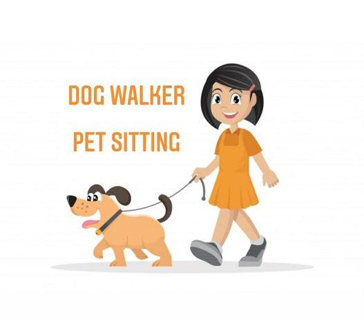 Dog walking e pet sitting