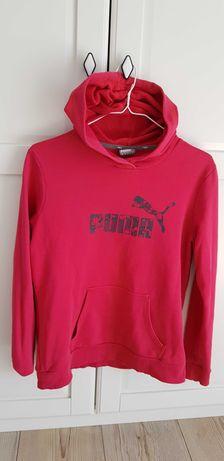 Bluza Puma M/L dla kobiet
