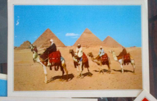 Открытки из Египта, 12 шт., новые
