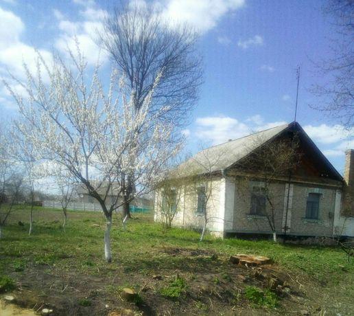 Продам дом в пгт Любар