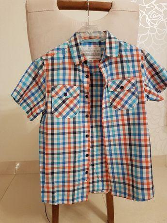 Koszula Cool Club 146