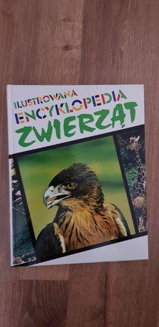 Ilustrowana Encyklopedia Zwierząt i Leksykon Zwierząt od A do Ż