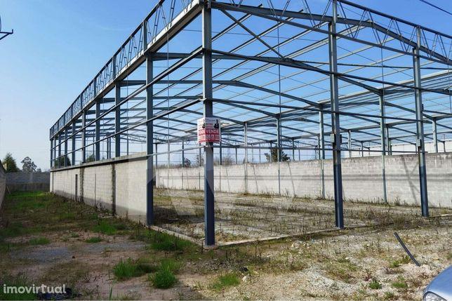 Terreno - Armazém - Pavilhão, Zona Industrial da Palhaça (Oliveira do