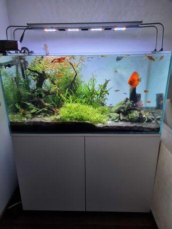 Akwarium 250L zestaw komplet szafka, filtr, lampa LED maxspect R420r
