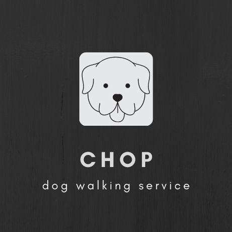 Выгул собак - CHOP
